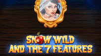 Игровой автомат Snow Wild And The 7 Features